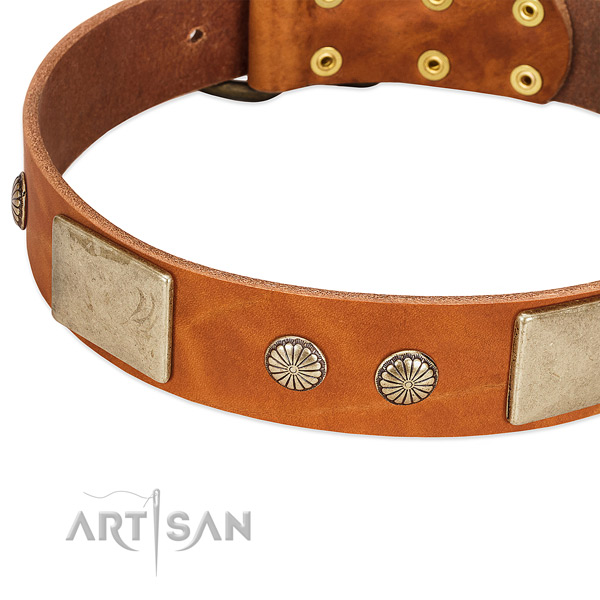 Durable fittings on full grain leather dog collar for your doggie