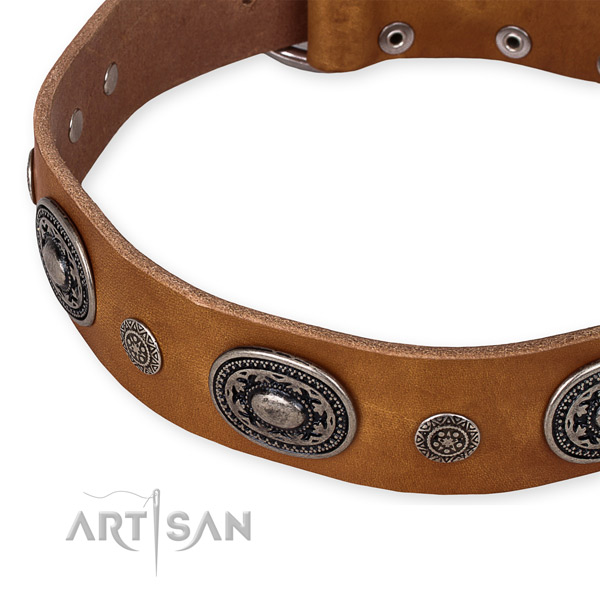 Top rate full grain leather dog collar created for your lovely dog