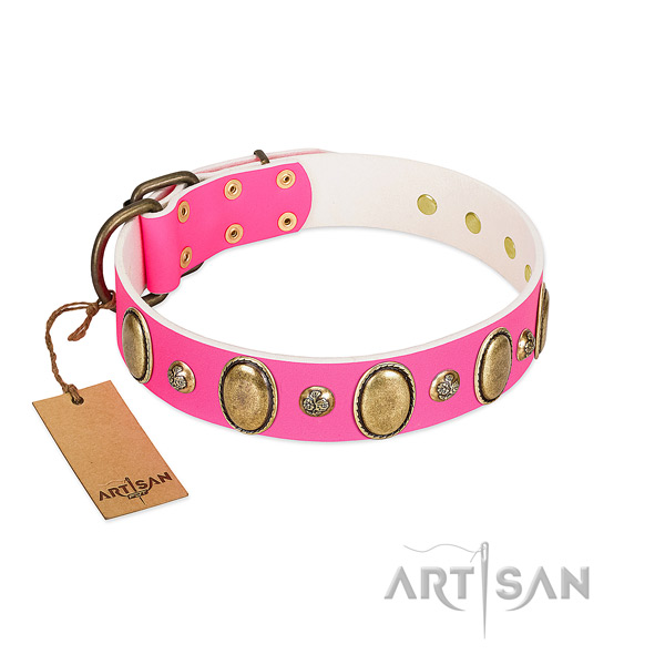 Daily walking soft full grain leather dog collar with studs