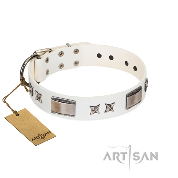 Stylish dog collar of full grain genuine leather