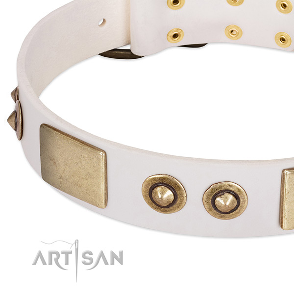 Corrosion proof D-ring on natural genuine leather dog collar for your pet