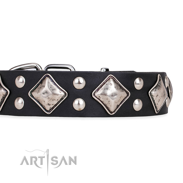 Full grain natural leather dog collar with extraordinary reliable adornments