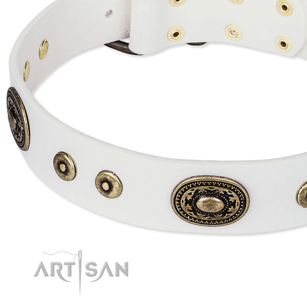 Full grain leather dog collar made of soft material with adornments