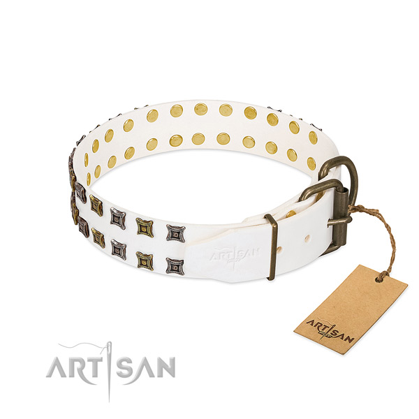 Full grain genuine leather collar with trendy adornments for your four-legged friend