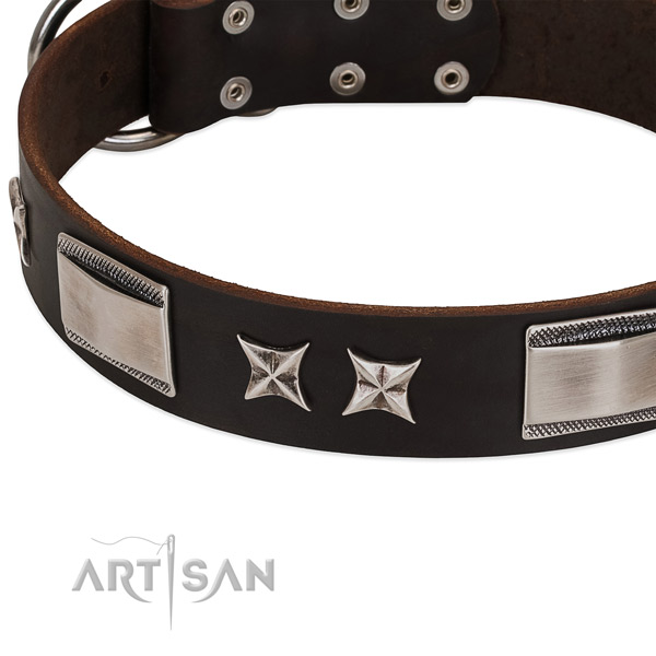 Embellished collar of full grain leather for your handsome doggie