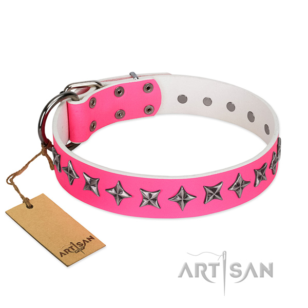 Quality genuine leather dog collar with extraordinary studs