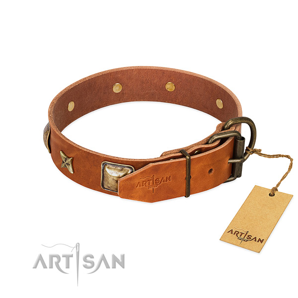 Genuine leather dog collar with durable hardware and studs