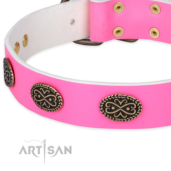 Leather dog collar with studs for walking