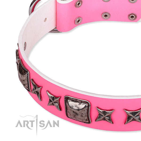 Daily use studded dog collar of durable full grain natural leather