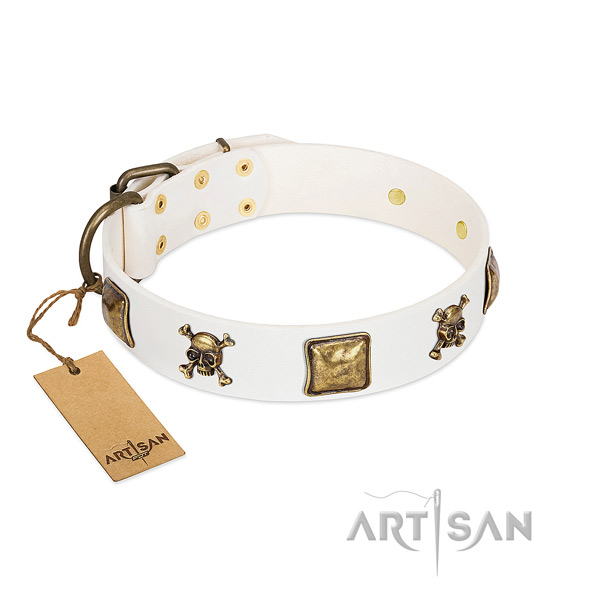 Top notch natural leather dog collar with reliable embellishments