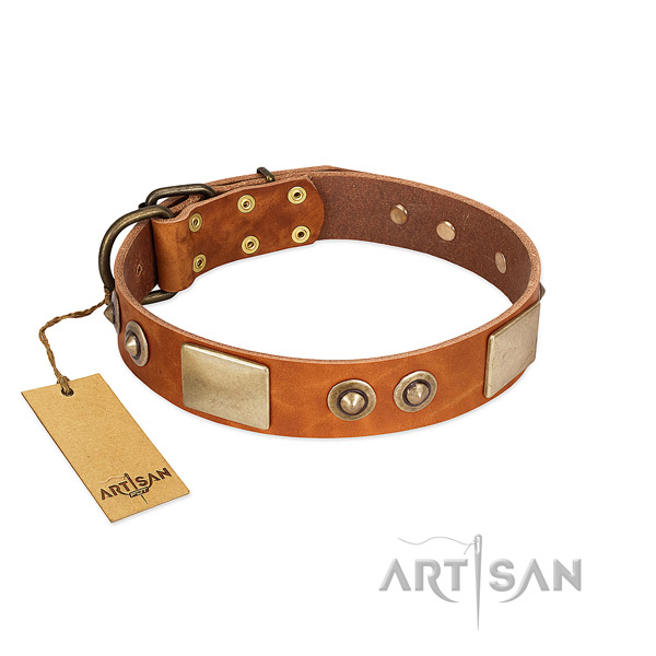 Easy to adjust natural genuine leather dog collar for walking your canine