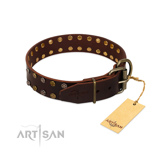 Walking leather dog collar with extraordinary decorations