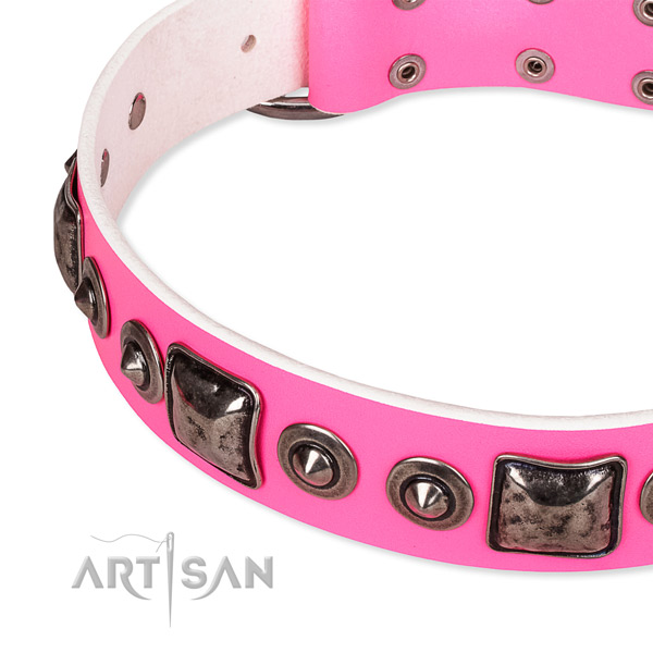 Quality full grain natural leather dog collar crafted for your beautiful doggie