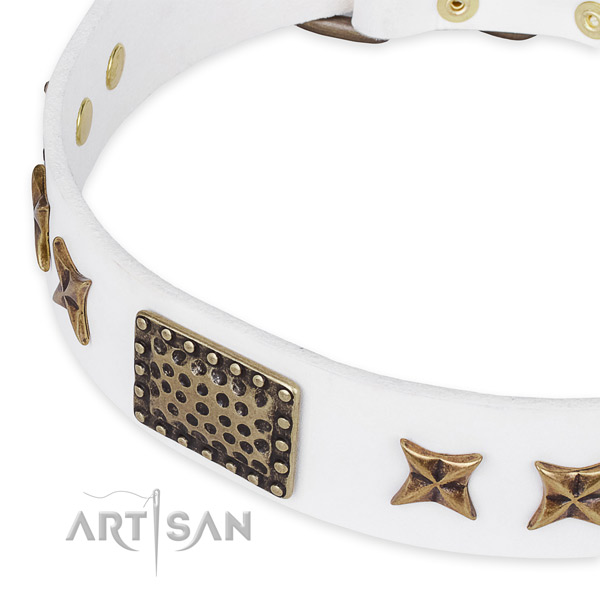 Natural genuine leather collar with rust-proof fittings for your lovely doggie