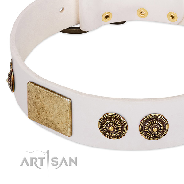 Stylish design dog collar crafted for your impressive four-legged friend