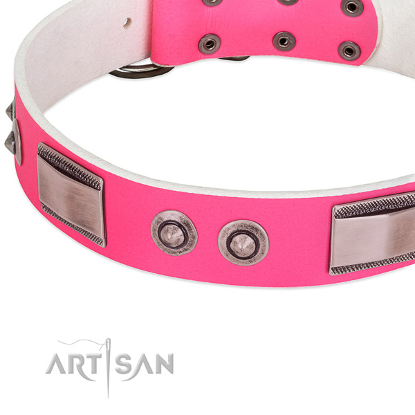 Impressive leather collar with studs for your dog