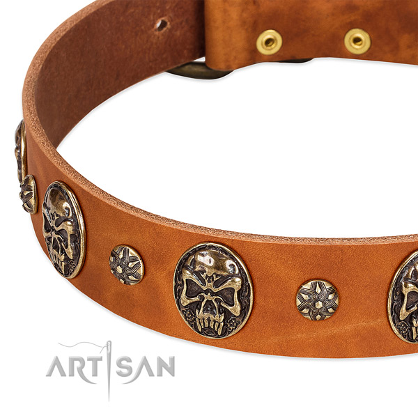 Durable hardware on full grain genuine leather dog collar for your four-legged friend