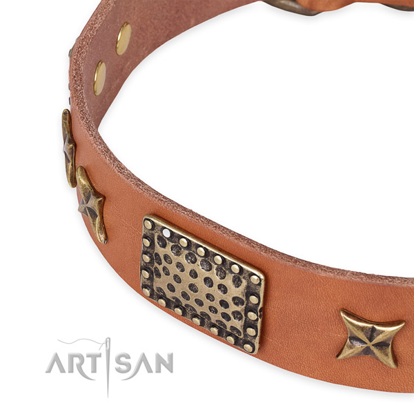 Full grain leather collar with corrosion proof buckle for your impressive pet