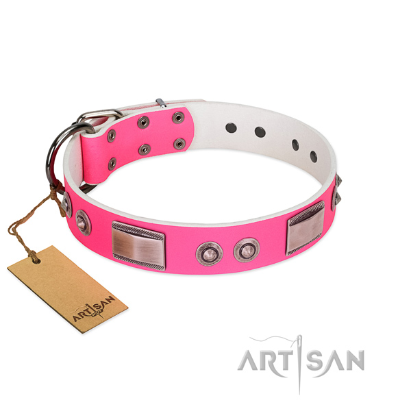 Comfortable dog collar of full grain natural leather with embellishments