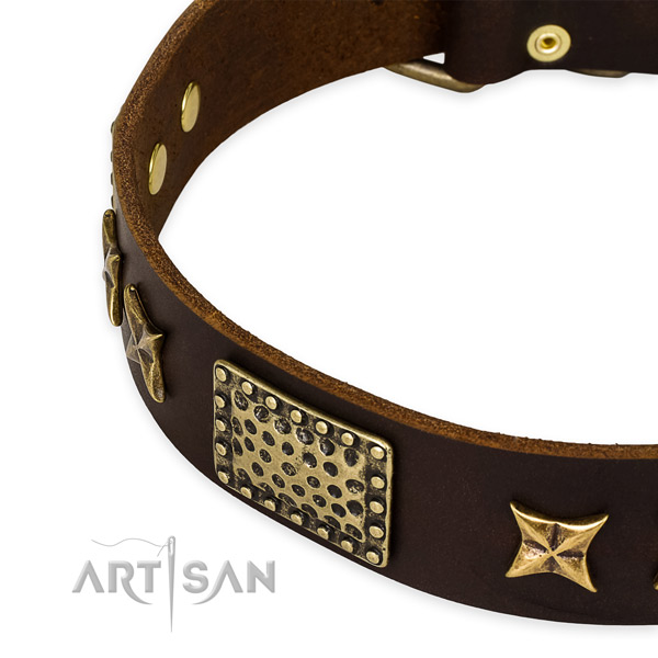 Full grain genuine leather collar with rust resistant traditional buckle for your attractive pet