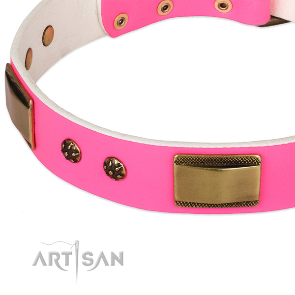 Corrosion resistant decorations on leather dog collar for your doggie