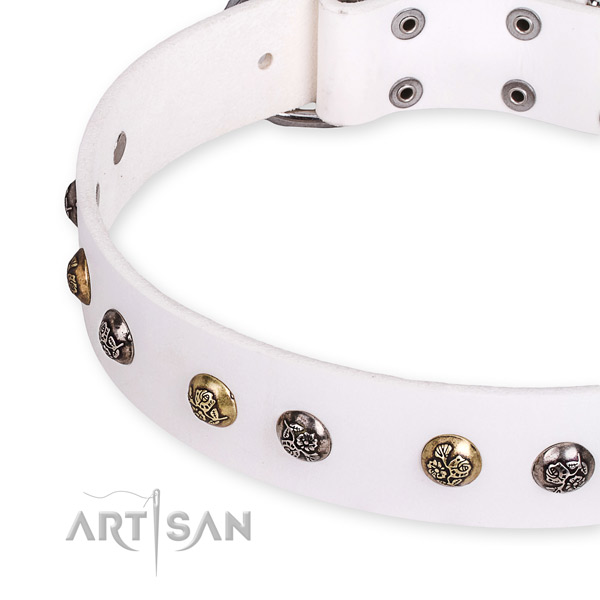 Natural leather dog collar with significant reliable adornments