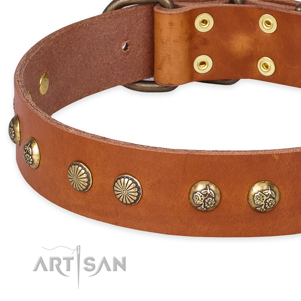 Full grain genuine leather collar with reliable fittings for your lovely pet