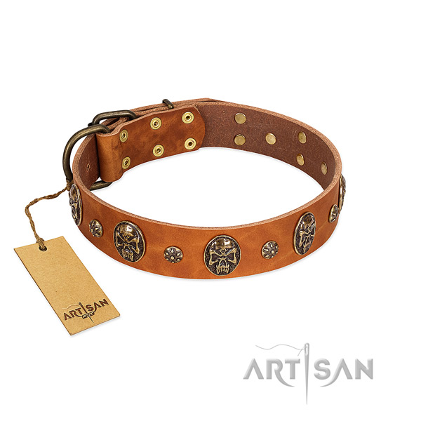 Exceptional full grain natural leather collar for your dog