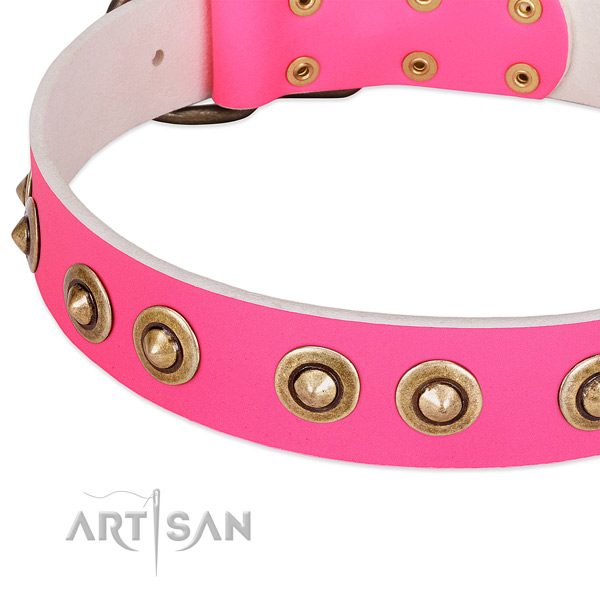 Rust resistant decorations on full grain natural leather dog collar for your dog