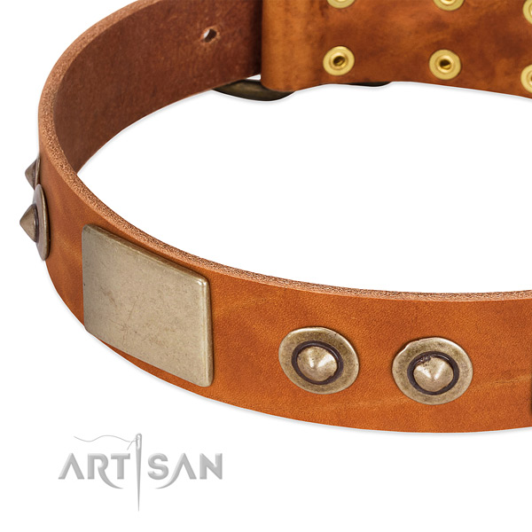 Rust-proof buckle on genuine leather dog collar for your dog