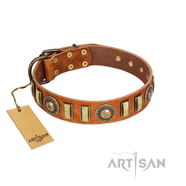 Unusual full grain leather dog collar with strong buckle