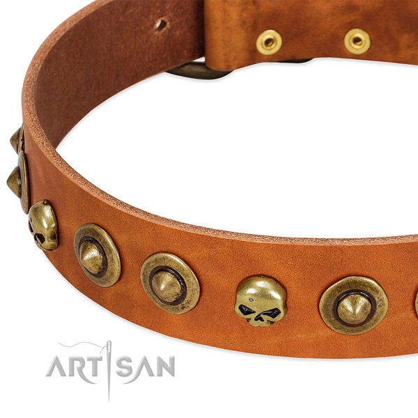 Awesome embellishments on full grain natural leather collar for your four-legged friend
