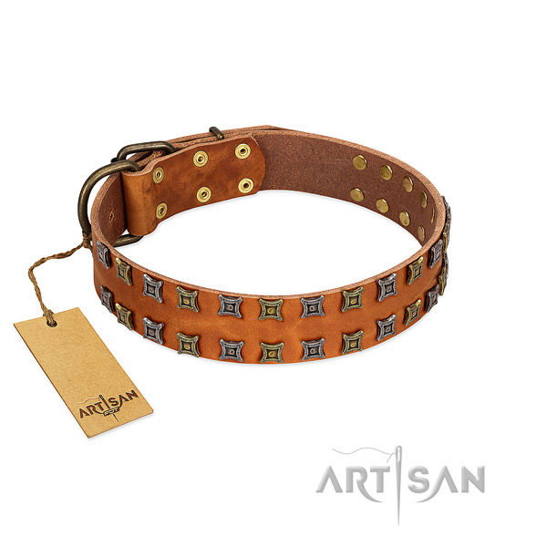 Reliable full grain leather dog collar with embellishments for your canine