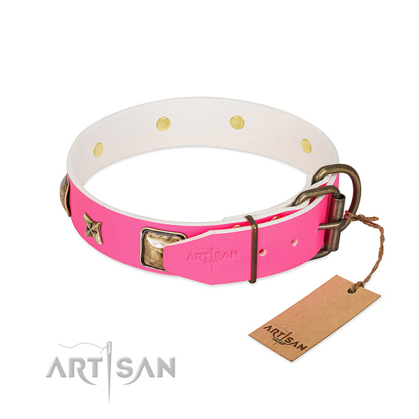 Corrosion proof hardware on leather collar for stylish walking your pet