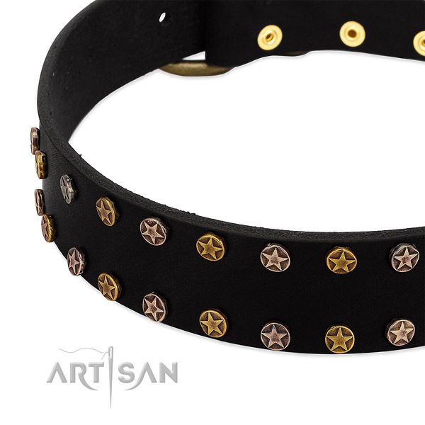 Awesome embellishments on full grain natural leather collar for your doggie