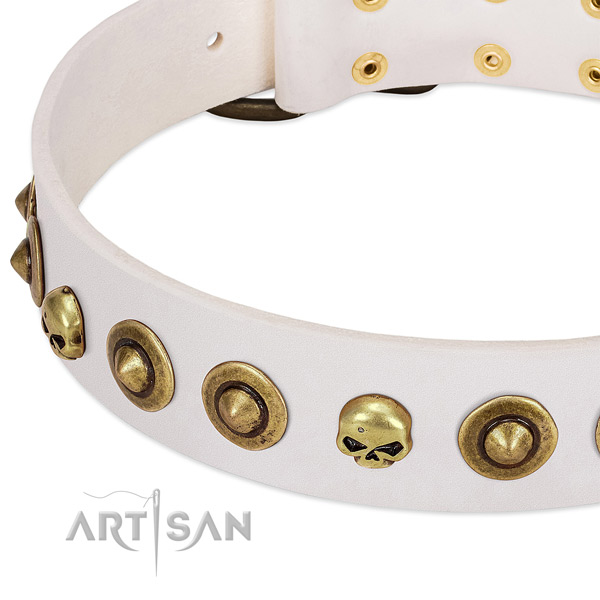 Extraordinary adornments on full grain leather collar for your dog