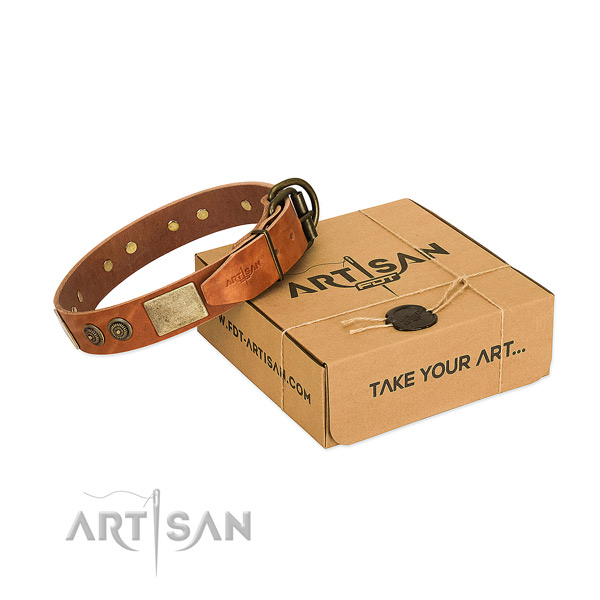 Reliable buckle on full grain genuine leather dog collar for everyday use