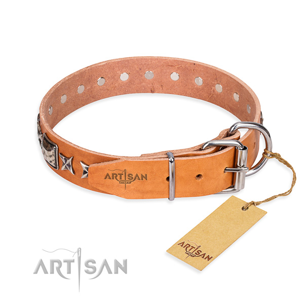 Strong adorned dog collar of full grain genuine leather