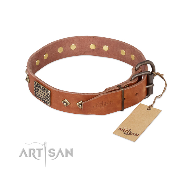 Leather dog collar with reliable hardware and decorations