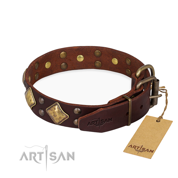 Genuine leather dog collar with trendy corrosion proof studs