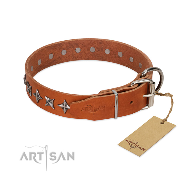 Everyday use studded dog collar of high quality genuine leather