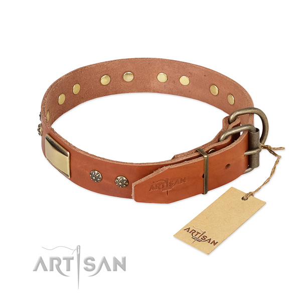 Full grain natural leather dog collar with rust resistant fittings and studs