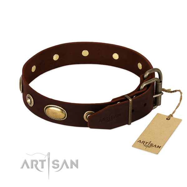 Reliable adornments on full grain natural leather dog collar for your doggie
