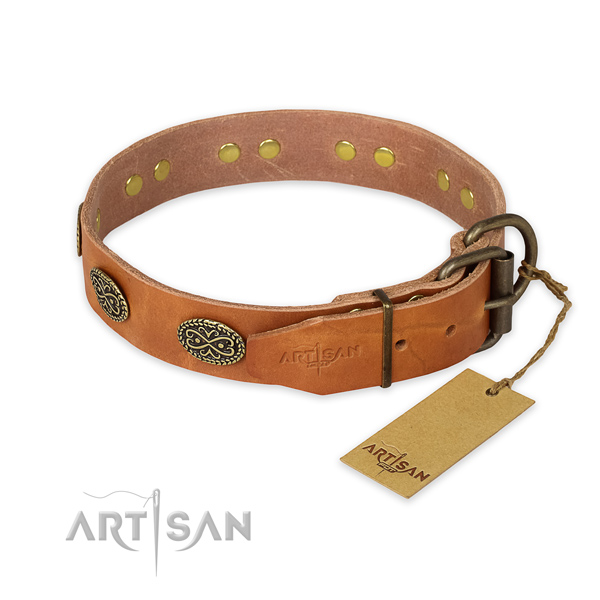 Durable D-ring on full grain natural leather collar for walking your pet