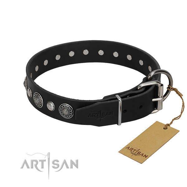 Strong full grain leather dog collar with extraordinary adornments