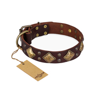 """Golden Square"" FDT Artisan Brown Leather Sharpei Collar with Large Squares"
