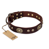 """Breath of Elegance"" FDT Artisan Decorated with Plates Brown Leather Sharpei Collar"
