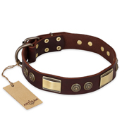 """Golden Stones"" FDT Artisan Brown Leather Sharpei Collar with Old Bronze Look Plates and Circles"