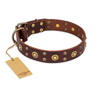 """Caprice of Fashion"" FDT Artisan Brown Leather Sharpei Collar with Round Decorations"
