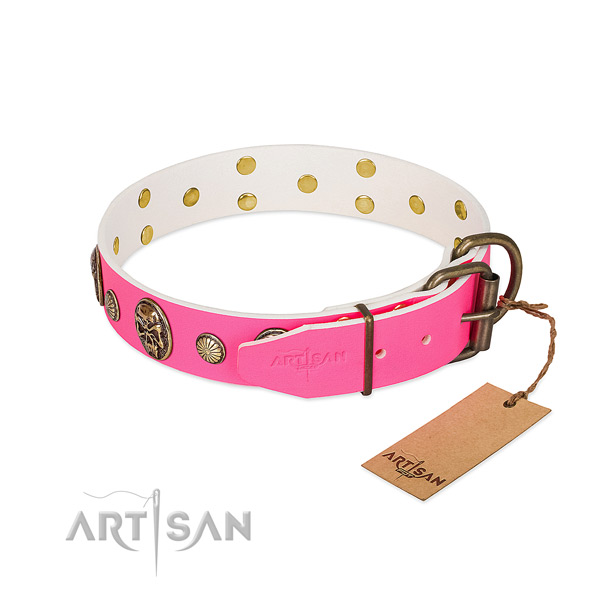Durable studs on genuine leather dog collar for your dog